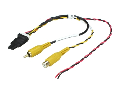 Adapter wideo i filtr sygnału wideo RPA-VA1